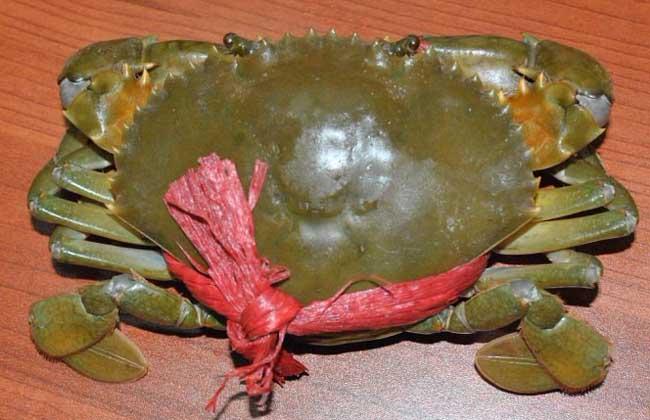 三门青蟹多少钱一斤